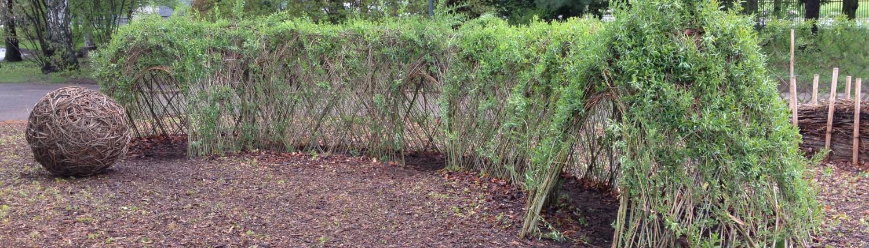 pileflett botanisk hage skovstuen pil pilehytte