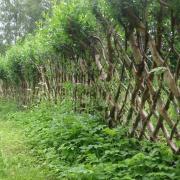 Skovstuen Pil, belgisk gjerde